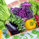 Leading Tips For Producing Your Organic Garden